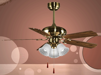 TEC1008 CL Ceiling Fan