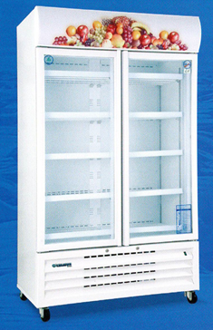 TSB2CF27 Standard Double Door Chiller