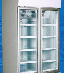 TSB2FF48 Standard Double Door Freezer